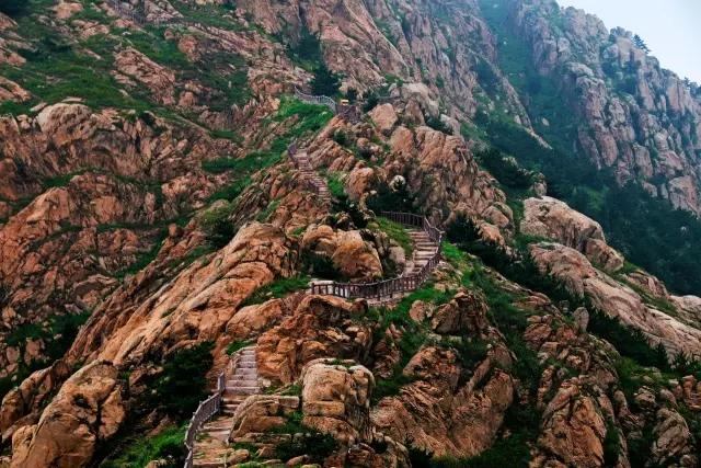 藏马山森林公园登山,千禧谷游乐场,马战表演,鸟艺表演